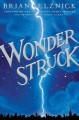 Go to record Wonderstruck : a novel in words and pictures