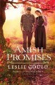 Go to record Amish promises