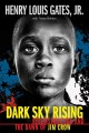 Go to record Dark sky rising : Reconstruction and the dawn of Jim Crow