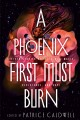 Go to record A phoenix first must burn : sixteen stories of black girl ...